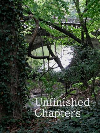 Unfinished Chapters